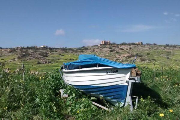 Boat at Selmun Malta